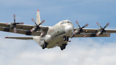 N130CG - Lockheed EC-130Q Hercules - Coulson Flying Tankers