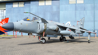 ZH796 - British Aerospace Sea Harrier F/A.2 - United Kingdom - Royal Navy