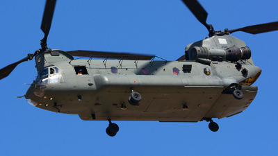 2510 - Boeing CH-47F Chinook - United Arab Emirates - Air Force