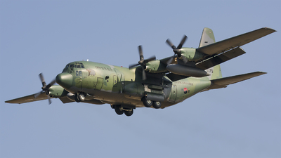 95-179 - Lockheed C-130H Hercules - South Korea - Air Force
