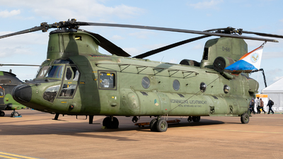 D-661 - Boeing CH-47D Chinook - Netherlands - Royal Air Force