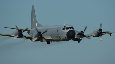 14803 - Lockheed P-3P Orion - Portugal - Air Force