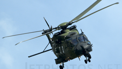 7818 - NH Industries NH-90 - Germany - Army