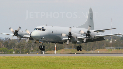 A9-657 - Lockheed AP-3C Orion - Australia - Royal Australian Air Force (RAAF)