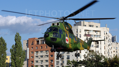 75 - IAR-330L Puma - Romania - Air Force