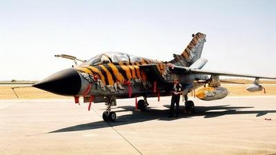 43-96 - Panavia Tornado IDS - Germany - Air Force