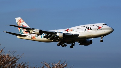 JA8184 - Boeing 747-346 - Japan Airlines (JAL)