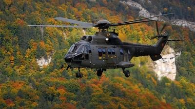 T-313 - Aerospatiale AS 332M1 Super Puma - Switzerland - Air Force