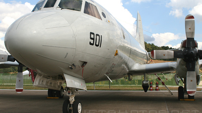 950901 - Lockheed P-3C Orion - South Korea - Navy