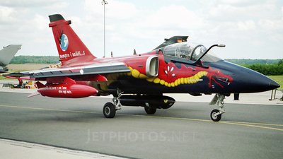 MM7149 - Alenia/Aermacchi/Embraer AMX - Italy - Air Force
