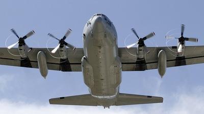 84007 - Lockheed Tp84 Hercules - Sweden - Air Force
