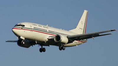 TP-02 - Boeing 737-33A - Mexico - Air Force