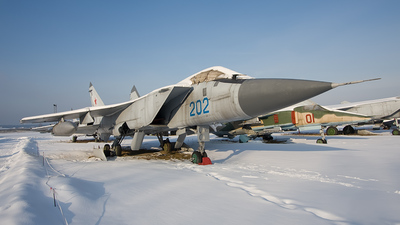 202 - Mikoyan-Gurevich MiG-31 Foxhound - Russia - Air Force