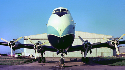 G-ASHZ - Aviation Traders ATL-98 Carvair - British Air Ferries (BAF)