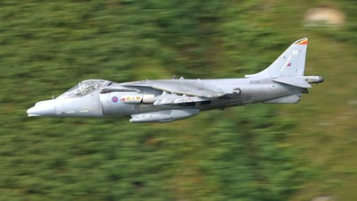 ZG510 - British Aerospace Harrier GR.9A - United Kingdom - Royal Air Force (RAF)