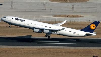 D-AIGR - Airbus A340-313X - Lufthansa