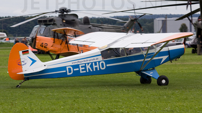 D-EKHO - Piper J-3L-65 Cub - Private