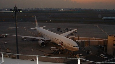 - Boeing 777-346 - Japan Airlines (JAL)