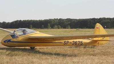 SP-3675 - SZD-8 Jaskólka - Private