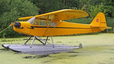 A picture of N62088 - Piper J3C65 - [8273] - © Steve Homewood