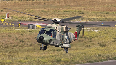 F-ZWTZ - NH Industries NH-90TTH - Oman - Royal Air Force