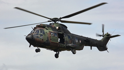 S-444 - Aérospatiale AS 532U2 Cougar - Netherlands - Army
