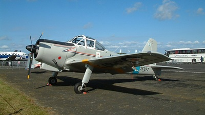 G-AWVF - Percival Provost T.1 - Private