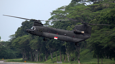 88191 - Boeing CH-47SD Chinook - Singapore - Air Force
