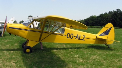 OO-ALZ - Piper PA-18-95 Super Cub - Private
