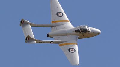 VH-VAM - De Havilland Vampire T.35 - Temora Aviation Museum
