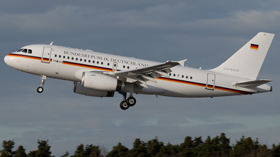 9846 - Airbus A319-133X(CJ) - Germany - Air Force