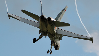 C.15-50 - McDonnell Douglas EF-18A+ Hornet - Spain - Air Force
