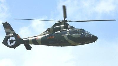 151 - Harbin Z-9A Haitun - China - Army