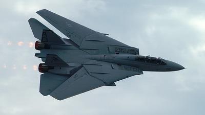- Grumman F-14A Tomcat - United States - US Navy (USN)