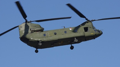 D-104 - Boeing CH-47D Chinook - Netherlands - Royal Air Force