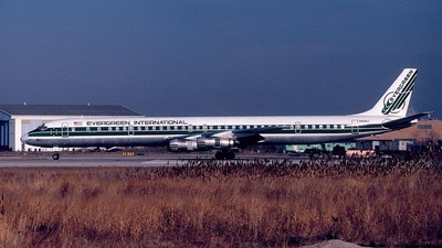 N810EV - Douglas DC-8-61(CF) - Evergreen International Airlines