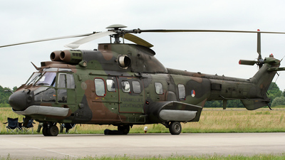S-442 - Aérospatiale AS 532U2 Cougar - Netherlands - Royal Air Force