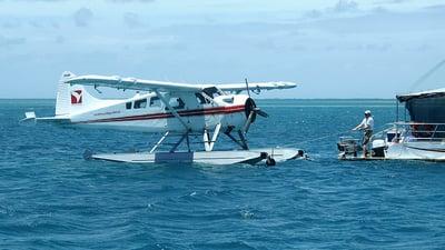 VH-AWI - De Havilland Canada DHC-2 Mk.I Beaver - Air Whitsunday Seaplanes
