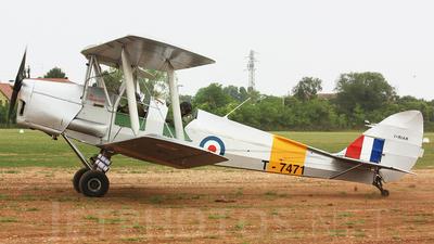 I-RIAR - De Havilland DH-82A Tiger Moth - Private