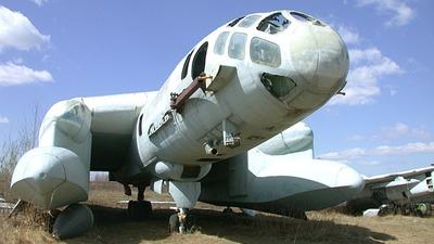 CCCP-19172 - Beriev Bartini VVA-14 - Russia - Air Force