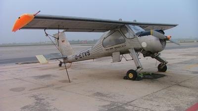 D-ETVS - PZL-Okecie 104 Wilga 35 - Falcon Alliance