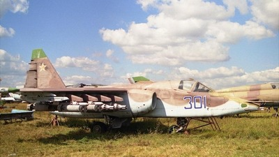 301 - Sukhoi Su-25 Frogfoot - Private
