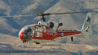 A picture of ZKHTF - Robinson R44 Raven II - [11990] - © Glenn Alderton