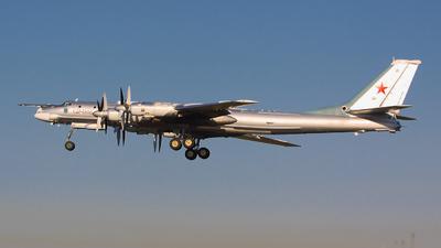 21 - Tupolev Tu-95 Bear - Russia - Air Force