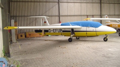 D-EFUP - RWF-3 Moltoplane - Private