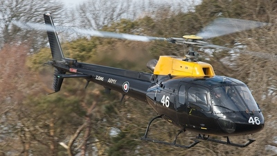 ZJ246 - Aérospatiale Squirrel HT.2 - United Kingdom - Army Air Corps