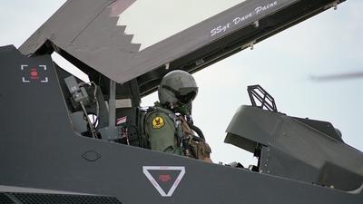 84-0826 - Lockheed F-117A Nighthawk - United States - US Air Force (USAF)
