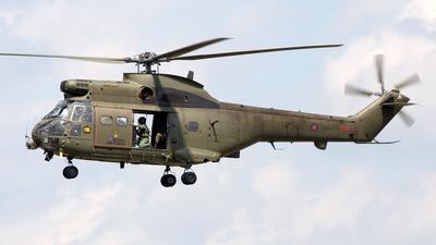 ZA939 - Westland Puma HC.1 - United Kingdom - Royal Air Force (RAF)