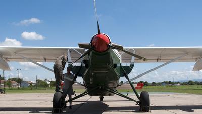 GN-804 - Pilatus PC-6/B2-H2 Turbo Porter - Argentina - Gendarmeria