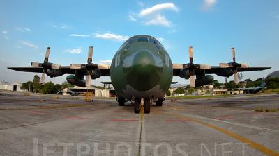 A picture of FAB2459 - Lockheed C130H Hercules -  - © Renato Serra Fonseca